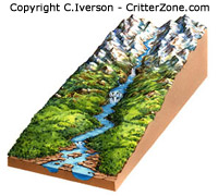 landscape, cutaway, illustration, art, freelance
